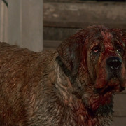 Did The CUJO Remake Lose Its Bite?