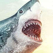 Shark Week Coming to DVD, A Week that Lasts All Year.