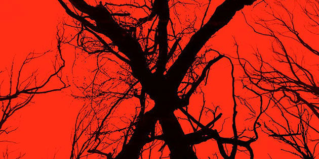 Lionsgate Reveals New Blair Witch Film project at ComicCon