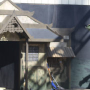 Knott's Scary Farm Tracker 2 – The Time for Fear is Here!