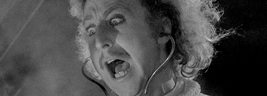 Young Frankenstein: The Story of the Making of the Film is a Wonderful Read