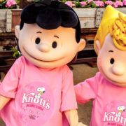 Knott's Berry Farm going PINK to Partner with Susan G. Komen Foundation!