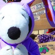 Boysenberry Festival at Knott's Berry Farm Off To Smashing Start